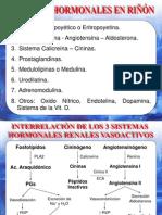 Fisiología renal endocrina