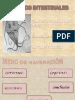MarielSánchez-Bioanálisis