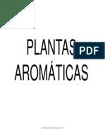 Bit PlantasAromaticas