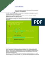Acidemia propinoica