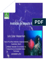 Avaliacao de Impactos Ambientais