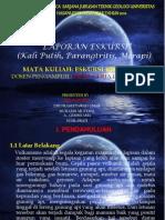 PPT_OK_KU