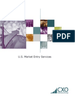 US Market Entry Services