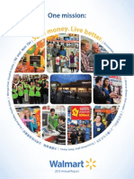 2013 Reporte Anual Global