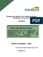 Plan de Negocio Sombreros Andahuaylas