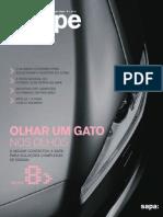 Sapa Group - Shape Magazine Portugal 2010 #1