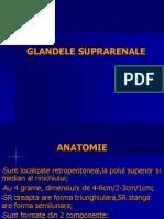 8. Glandele Suprarenale , Hiperplazia Adrenala