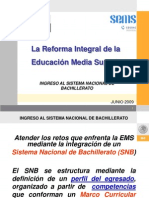 A3_Ingresoal SNB.pdf