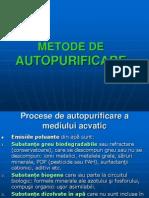 Autopurificarea