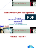 Primavera Project Management