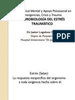 Neurobiologia Del Trauma