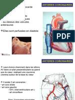 PCEM1_2008_cours_5bis_CardioVasc_noir_et_blanc_-_copie.ppt