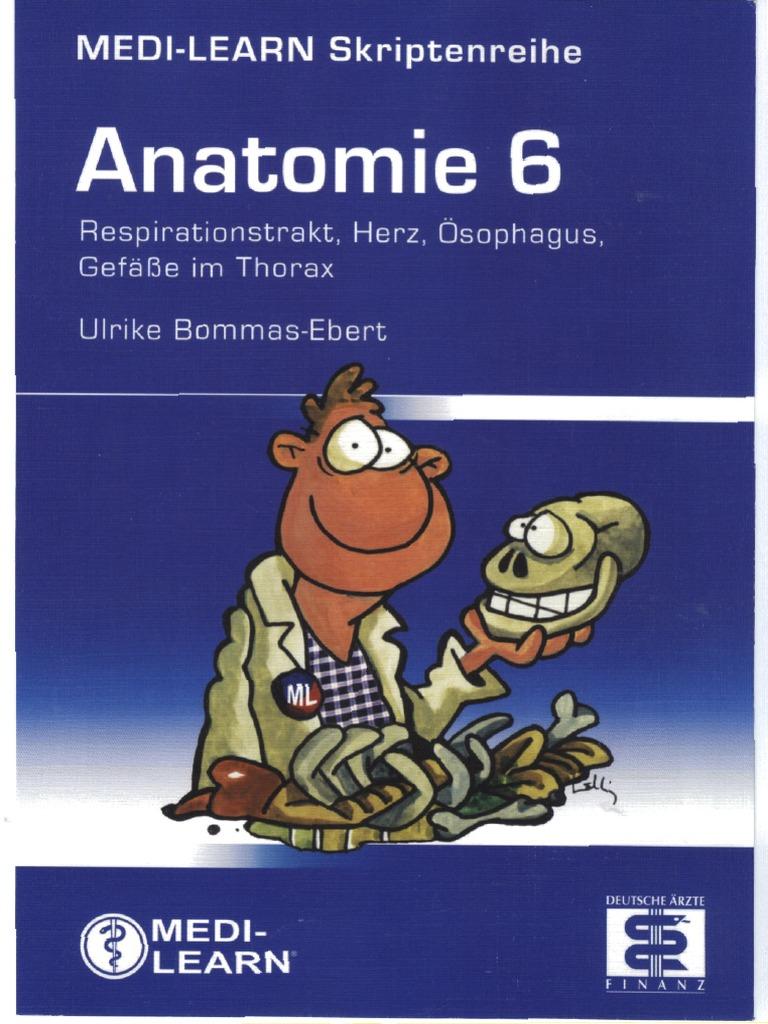 Medi-Learn Anatomie Band 6; 1. Aufl. 2007