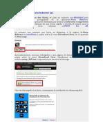 Tutorial sobre PictoSelector.pdf
