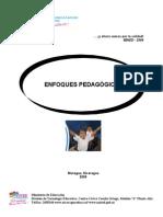 Enfoques Pedagogicos y Didacticos
