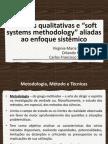 """Técnicas qualitativas e """"soft systems methodology"""" aliadas ao enfoque sistêmico"""