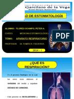 Aparato Respiratorio ( Expo )