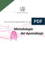 13. Metodología DEL APRENDIZAJE DE GUATEMALA