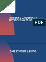Metabolismos de Lipidos