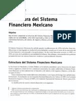 Cap 2 (Estructura Del Sistema Financiero Mexicano)