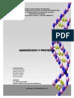 56511068 Trabajo de Aminoacidos y Proteinas