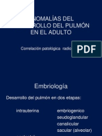 Anomalias pulmon adulto