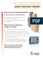 Little Anne Features Flyer