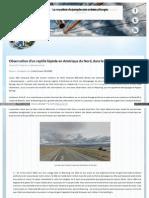 Newsoftomorrow Org Ufologie Creatures Observation Dun Reptil