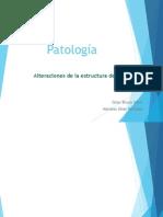 Alteracion de Ka Estructura Del Esmalte y Dentina