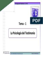 2013 14 PsiTestimonio TEMA 1