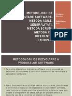 Metodologii de Dezvoltare Software