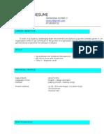 Resume Excel