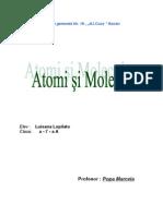 Atomi Si Molecule.docb910f