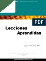Libro - Lecciones Aprendidas - Luis Oviedo