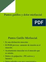 Punto Gatillo