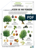 Fruits anciens de nos vergers