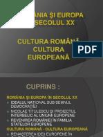 Romania Si Europa Sec Xx