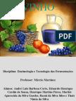 Apresentação - Enzimologia e Tecnologia das Fermentações - Vinho