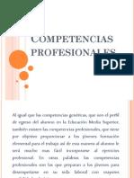 3-Competencias Profesionales.pdf