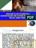 Exposicion Del Proyecto de Inversion 1...