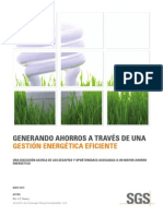 SGS SSC Energy Management White Paper May 2013 ES Update A4 en 13 07