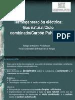 Termogeneracion_electrica