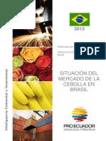 Situacion Del Mercado de La Cebolla en Ecuador
