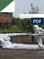 Firing Schiuma