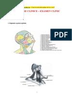Manevre Clinice - Examen Clinic-xBOOKS