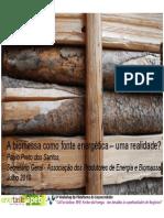 6º Workshop - APEB - Paulo Preto dos Santos