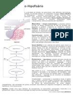 Fisiologia -  Eixo Hipotálamo-Hipofisário