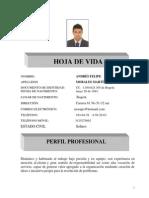 Hoja de Vida Felipe (1)