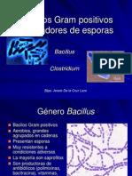 bacilosgrampositivosformadoresdeesporas-100606193054-phpapp02