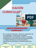 1. Programación Curricular